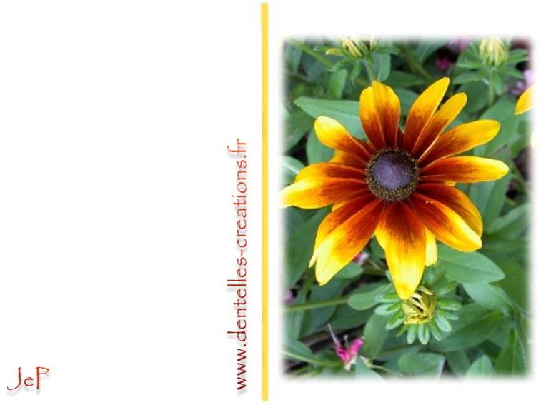 Cartes imprimer gratuitement cr ations jep - Catalogue de fleurs gratuit ...